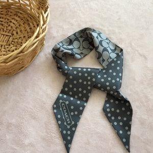 Coach ponytail scarf